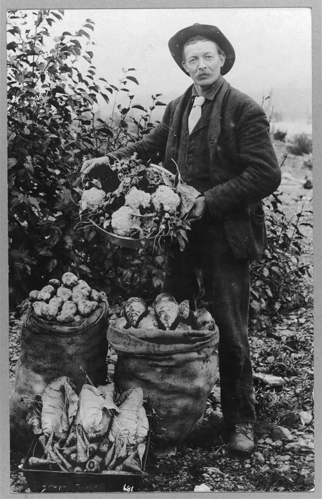 vegetable-farmer
