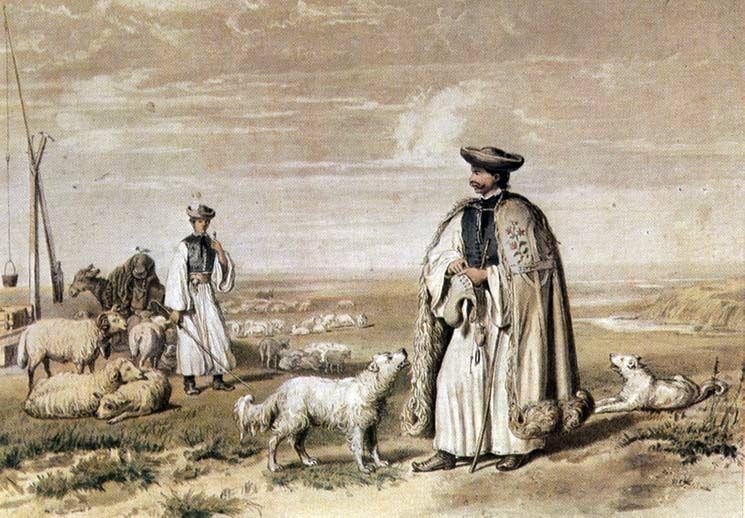Alföldi huhászok, 1855