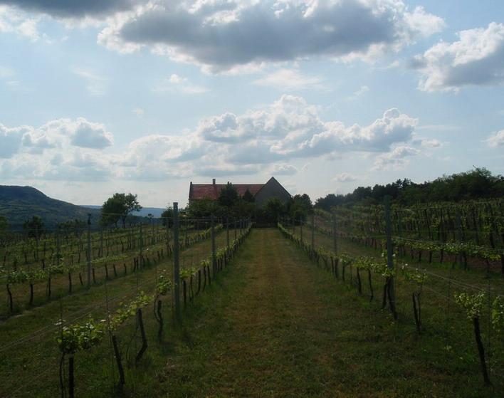 Villa Tolnay birtok; Photo: Csíki Sándor
