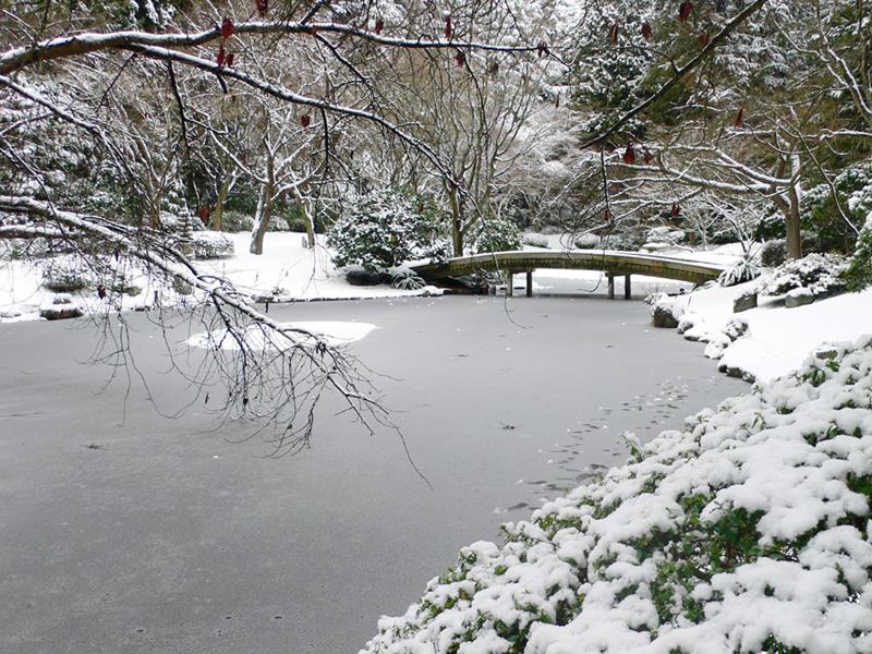 Nitobe Memorial Garden, Forrás: ubcbotanicalgarden