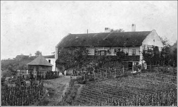 Szentgyörgyi Horváth-Augusz pince (a taposókút elől), 1900-as évek eleje (Keller Istvánné gyűjteménye, Budapest), Forrás: sulinet.hu