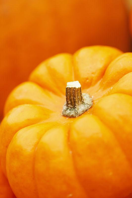 Sütőtök; Forrás: copykat.com