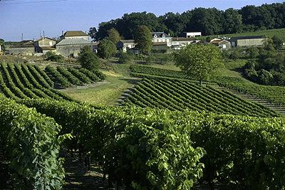 Cognac régió, Forrás: businessweek.com