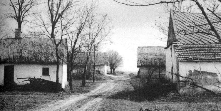 Sorba rendeződött szállás-épületek (Uszod-Hanyik, Bács-Kiskun m., 1970-es évek), Forrás: mek.oszk.hu