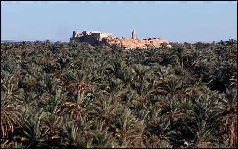 Egyiptom, Siwa, Ámon templomának romjai, Forrás: www.minamar.com