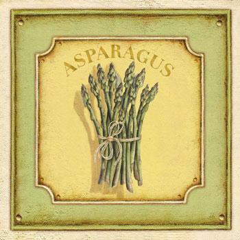 Asparagus officinalis, Forrás: squidoo.com