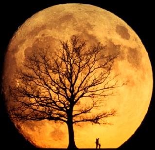 super pink moon, szuper hold