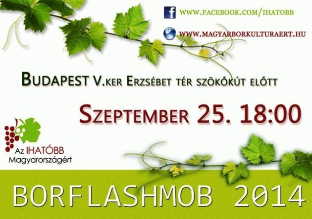 borflashmob2014