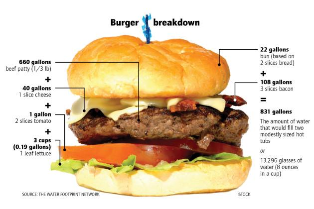 A hamburger vízlábnyoma