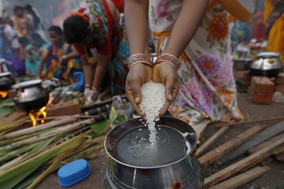 Rizsfőzés Indiában