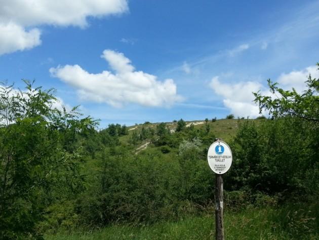 Fóti-Somlyó hegy (Forrás: kirandulastippek.hu)