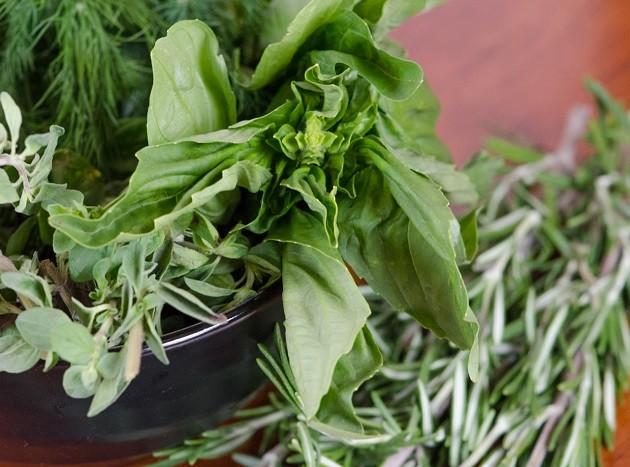 Friss fűszernövények: zsálya, bazsalikom, rozmaring