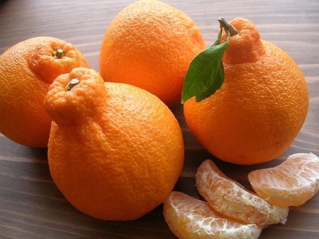 Dekopon mandarin-narancs (Japán)