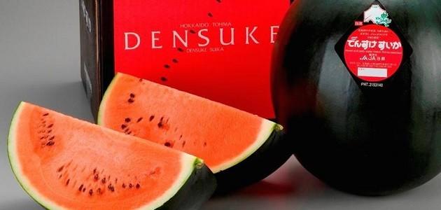 Densuke görögdinnye (Hokkaido, Japán) (Forrás: tx.english-ch.com)