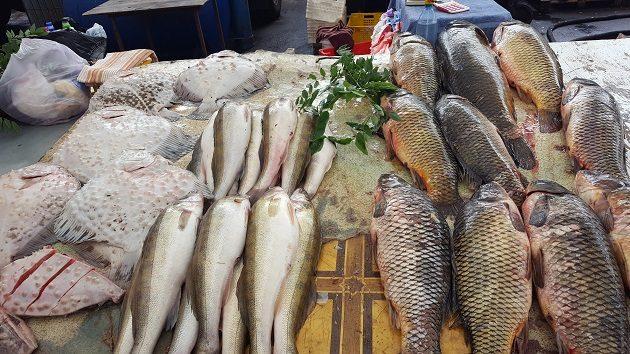 Tengeri és édesvízi halak (Privoz Piac, Ogyessza, 2016)