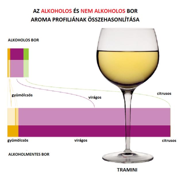 A Tramini virágos illatjegyei az alkohol csökkenésével erőteljesen erősödnek