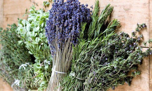 Mediterrán fűszernövények