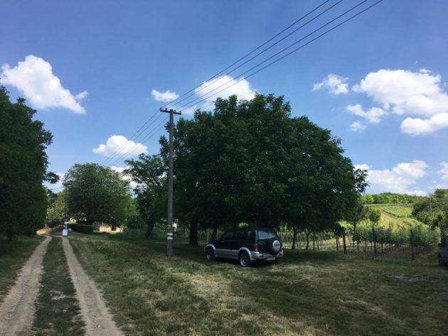 A muzslai szőlőhegyre vezető út