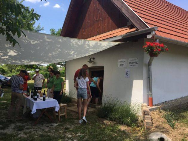 Borkóstolás a muzslai szőlőhegyen. A Chateau Béla és Borvák Pincészet