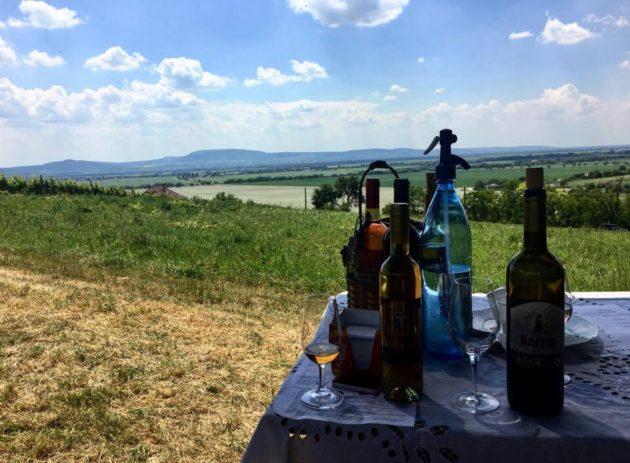 Geönczeöl Attila szőlőjének végén. (A szemközti dombok már Magyarország.)