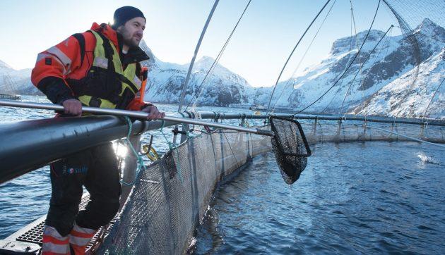 Halász farm egy norvég fjordban.