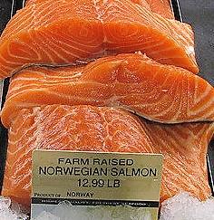 norvég tenyésztett lazac