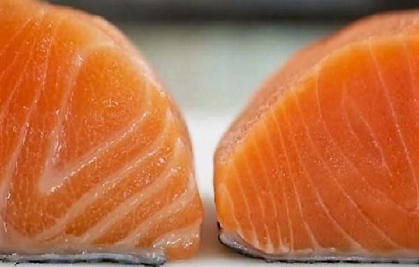 Balra a zsírosabb, tenyésztett, jobbra a kevésbé zsíros, sötétebb színű vad lazac húsa
