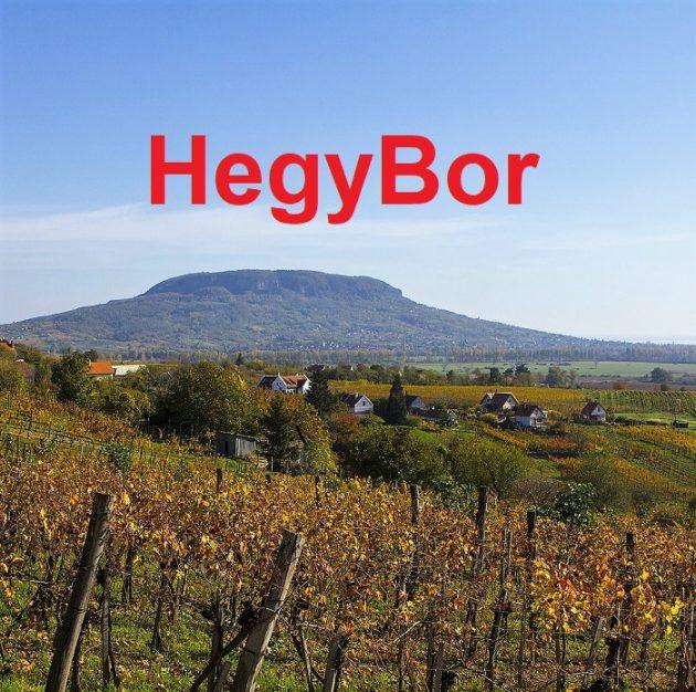 HegyBor
