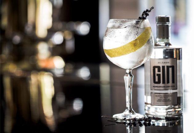 Az Agárdi Pálinkafőzde új itala - gin (2018)