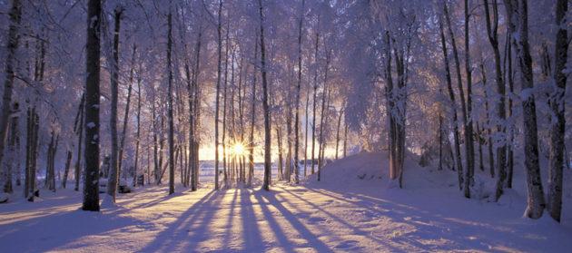 A téli napfordulókor van az év leghosszabb éjszakája
