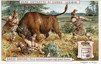 Liebig húskivonatának itáliai reklámja az 1900-as években