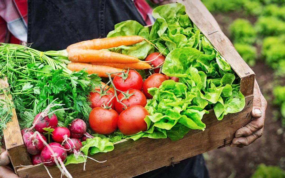 ÖKO, BIO, ORGANIKUS – ideggázok helyett, peszticidek