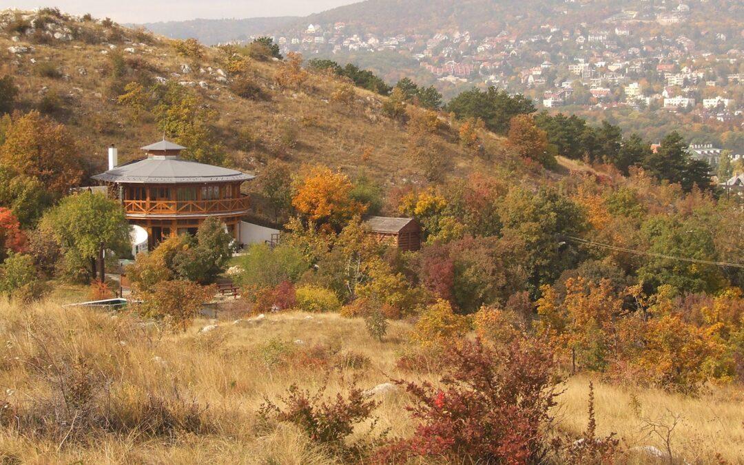 AMBRUS LAJOS – A sashegyi és gellérthegyi vörös és a budai őszibarack