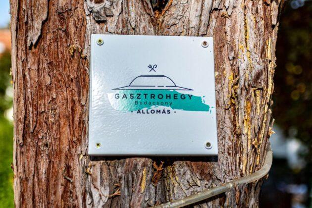 Gasztrohegy Badacsoy