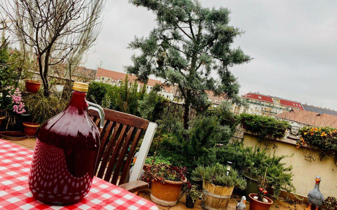 ELSŐ PESTI BIOBOR 2020 – Elkészült a Haller-terasz első bora!